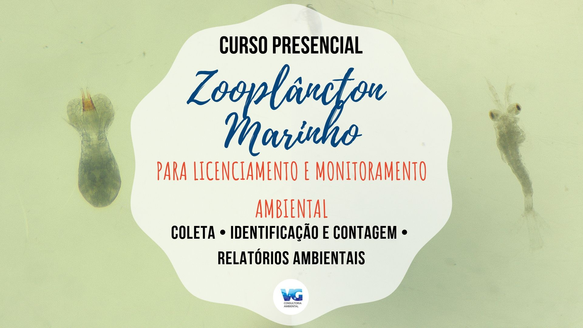 licenciamento-zoo-marinho-presencial