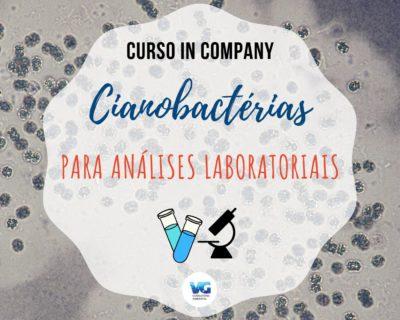 Cianobactérias para Análises Laboratoriais