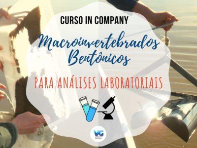 Macroinvertebrados Bentônicos para Análises Laboratoriais