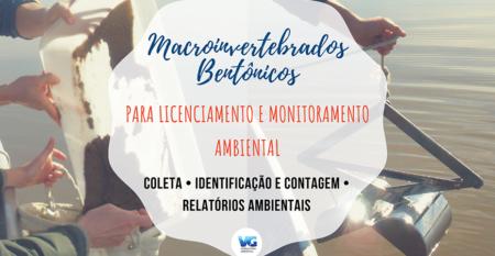 macro-licenciamento-ambiental